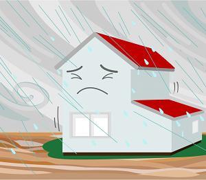 台風被害 火災保険
