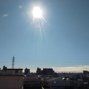 本日、東京は晴れて暖かい❤️