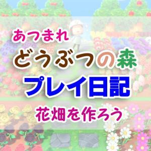 花を育てて、虹色の花畑を作ろう!【あつまれ どうぶつの森】