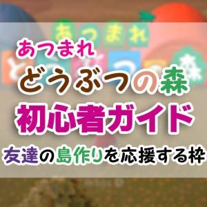 はじめての「あつ森」初心者ガイド(1)【あつまれどうぶつの森】