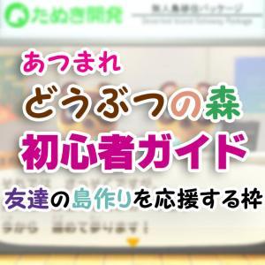 はじめての「あつ森」初心者ガイド(2)【あつまれどうぶつの森】
