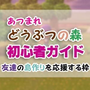 はじめての「あつ森」初心者ガイド(4)【あつまれどうぶつの森】