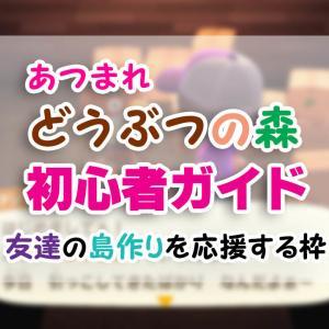 はじめての「あつ森」初心者ガイド(6)【あつまれどうぶつの森】