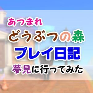 新潟県佐渡市が島主の「さどが島」へ/「夢見」に行ってみた・その6【あつまれどうぶつの森】