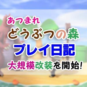 島クリエイターで超改装(1)計画→撤収から開始!【あつまれ どうぶつの森】