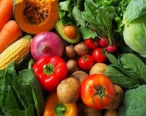 アブラナ科の野菜一覧