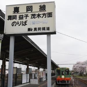 2021年4月1日 真岡鐵道 桜・菜の花街道 1
