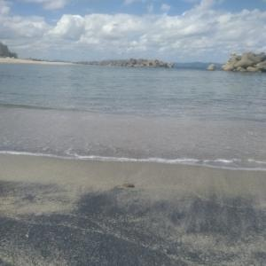 今年の海は透明度高い気がします