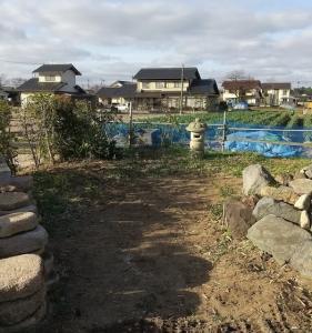 黒竹の伐採・伐根