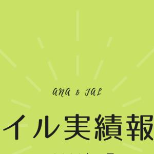 【マイル実績報告】2020年1月