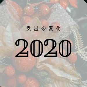 2020年におきた支出の変化