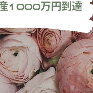 純資産1000万円到達のキロク