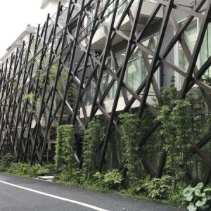 竹に囲まれたレジデンスとヨックモックミュージアム