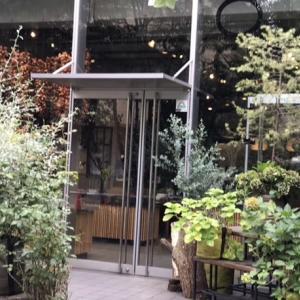 骨董通りの新しいお店とニコライバーグマン花店