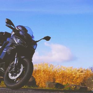 【バイク】KAWASAKI Ninja1000SXに乗り換えて感じた事をつらつら書いていく【レビュー】