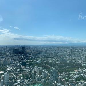 塩田千春展と東京一望