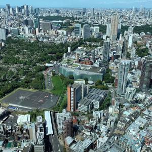 充実のバスキア展と東京の街