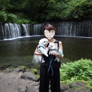 旧軽井沢の白糸の滝