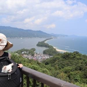 日本三景 天橋立の絶景