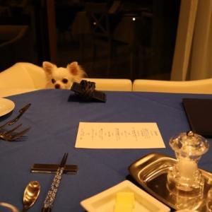 WAN'S RESORT城ケ崎での楽しみの夕食へ