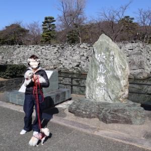 日本100名城 徳島城登城