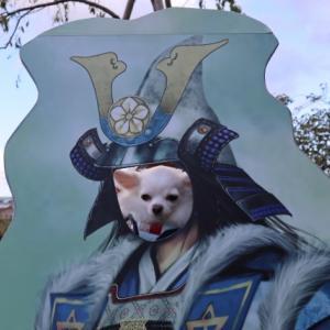 福知山城で明智JOYJOY参上!