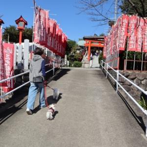 国宝 日本100名城 犬山城へ