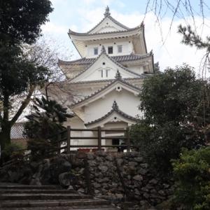 雪の関ヶ原から続日本100名城 岐阜 大垣城