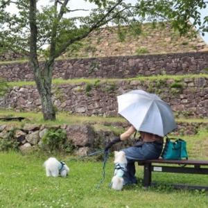 続日本100名城の米子城へ