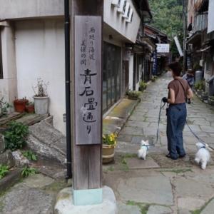 恵比寿さんの総本山の美保神社へ