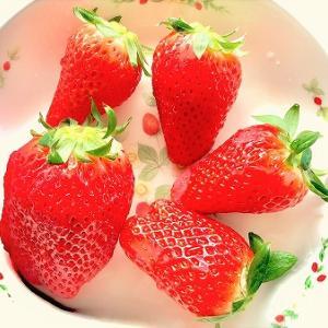 道の駅 神戸フルーツフラワーパークで買った苺(いちご)が美味し過ぎ!甘い