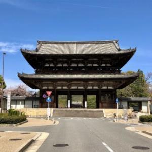 仁和寺の桜とツツジ・観光・お土産屋さんを楽しむ旅