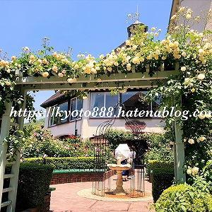 神戸布引ハーブ園で薔薇やラベンダーの花を楽しむ旅