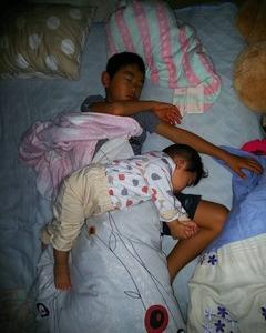 兄と重なって寝る子狼。