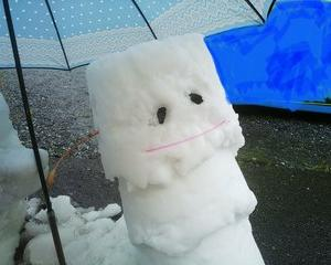 雪だるまを作ったよ: