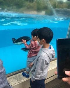高坂こども動物園2:
