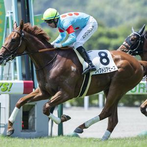 【先週の出資馬の結果】パイロテクにクスに続き、ヴィクトリアピースが新馬勝ち!!