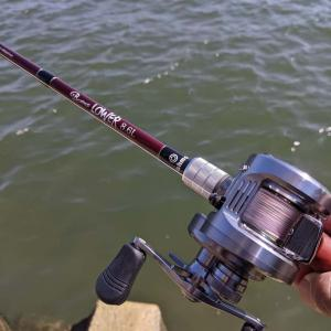 前から気になってつい買ってしまったロッド、fishman「ビームス ローワー 8.6L」のインプレ