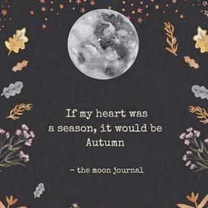 【天秤座新月】魂が望む方へ進む。個性を出していくタイミング!