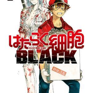 はたらく細胞 BLACK 1巻