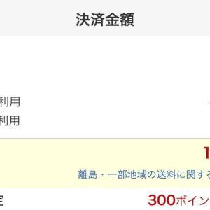 【今だけ半額】NEWロンシャン風バッグを1,000円台で買いました