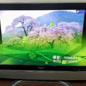 テレビでネットを見よう!!