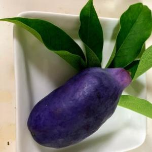 珍しい果物2種