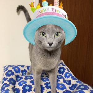 エマ6歳の誕生日!!