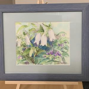 蛍袋の絵と紫陽花