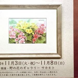 「花たちとの出会い」展と大芦渓谷
