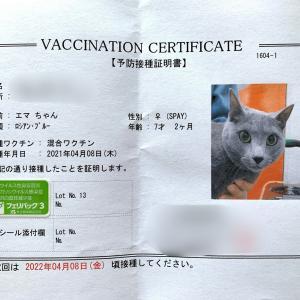 ワクチン接種、その他いろいろ(^^)