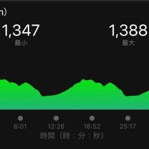 朝から山を走る。