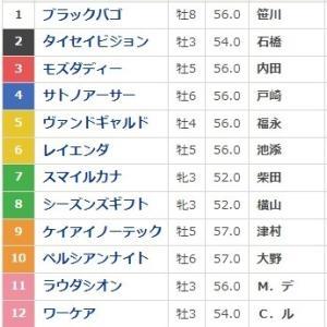 富士S(GⅡ)枠順とポイント