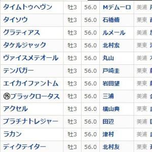 京成杯(GⅢ)枠順とポイント